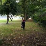 The Autumn leaf situation