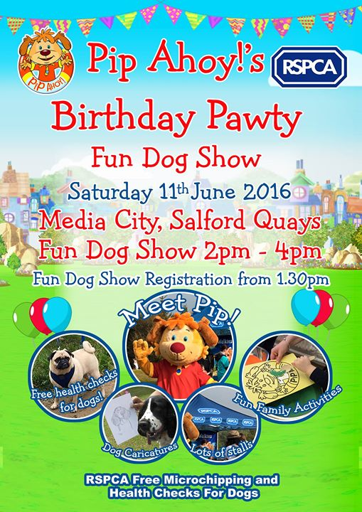 Pip ahoy dog show