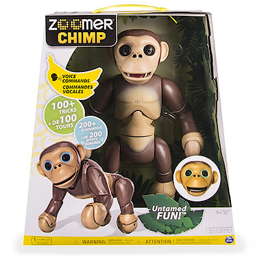 zoomer-chimp-in-box